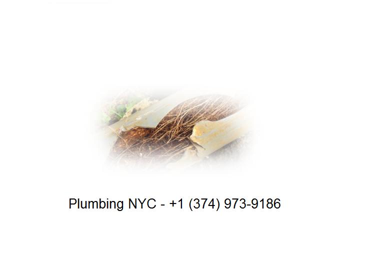 Plumbing NYC